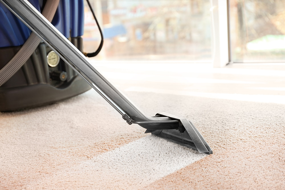 Professional carpet cleaning services in Stirling - carpet being steam cleaned
